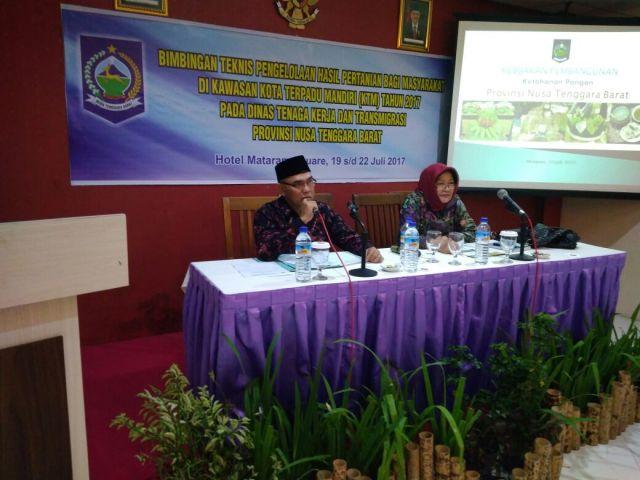 Narasumber Bintek Pengolahan Hasil Pertanian di Kawasan KTM